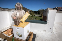 AppState Starts Beekeeping Program April 24, 2018
